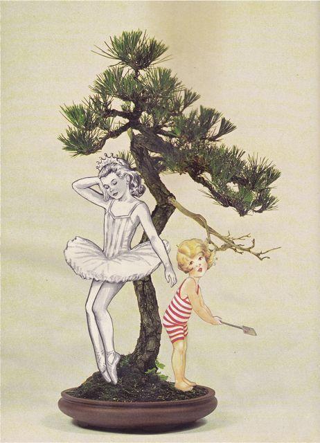 A Child's Garden of Bonsai Ballet Verses | William Davies King
